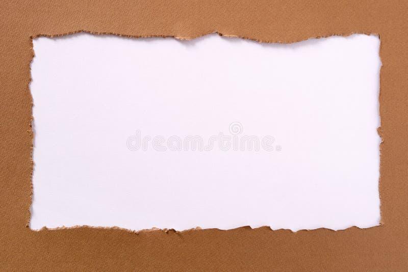 Bordo disordinato della carta marrone del fondo della struttura bianca oblunga lacerata del confine fotografia stock
