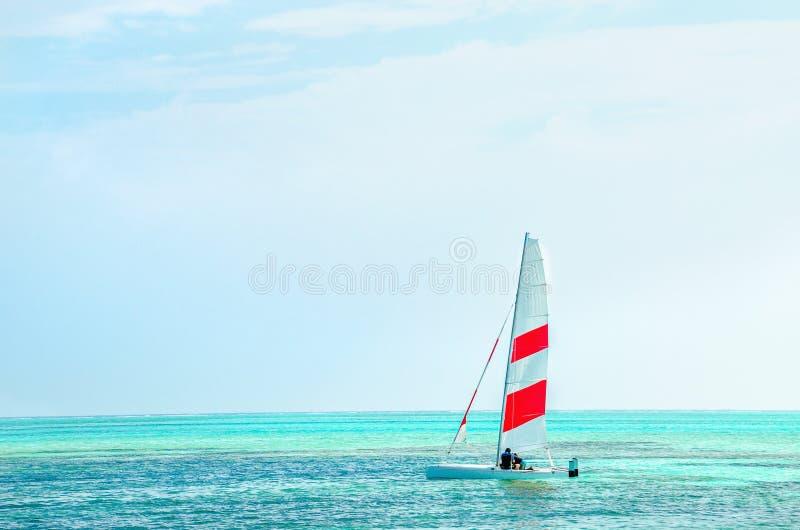 Bordo facente windsurf contro l'acqua azzurrata dell'Oceano Indiano, Maldive immagine stock libera da diritti