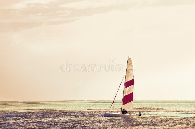 Bordo facente windsurf contro l'acqua azzurrata dell'Oceano Indiano, Maldive fotografia stock libera da diritti