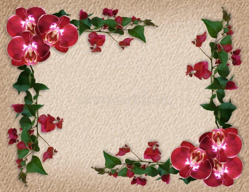 Bordo floreale del Bougainvillea e delle orchidee illustrazione di stock