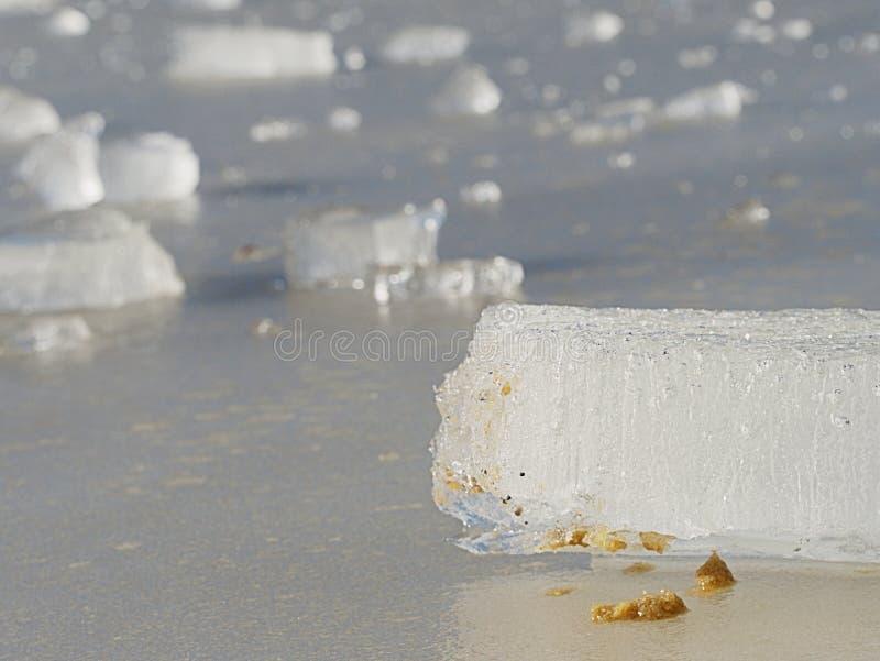 Bordo ghiacciato sottile contro la forte luce del sole In banchisa galleggiante sono le crepe visibili fotografia stock libera da diritti