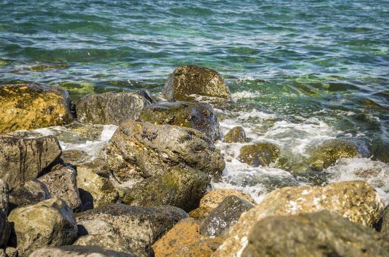 Bordo pietroso dell'oceano con i granchi fotografia stock