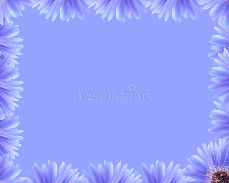 Bordo viola del fiore illustrazione di stock