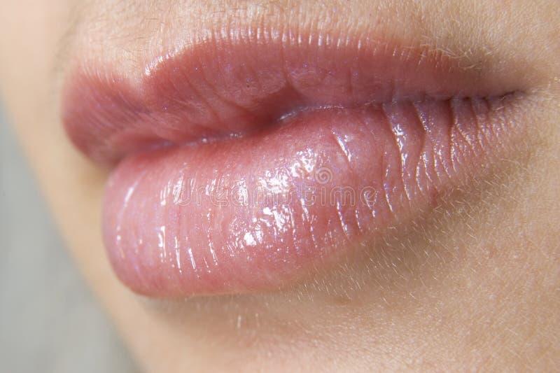 Download Bordos imagem de stock. Imagem de vermelho, humano, beijo - 104429