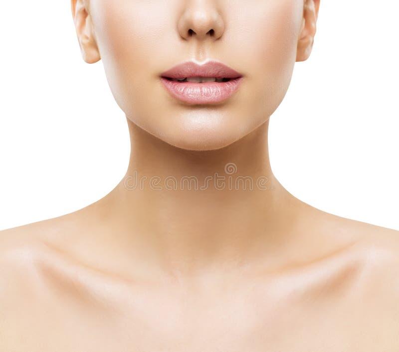 Bordos, beleza da cara da mulher, boca e close up da pele do pescoço, pele das mulheres fotos de stock