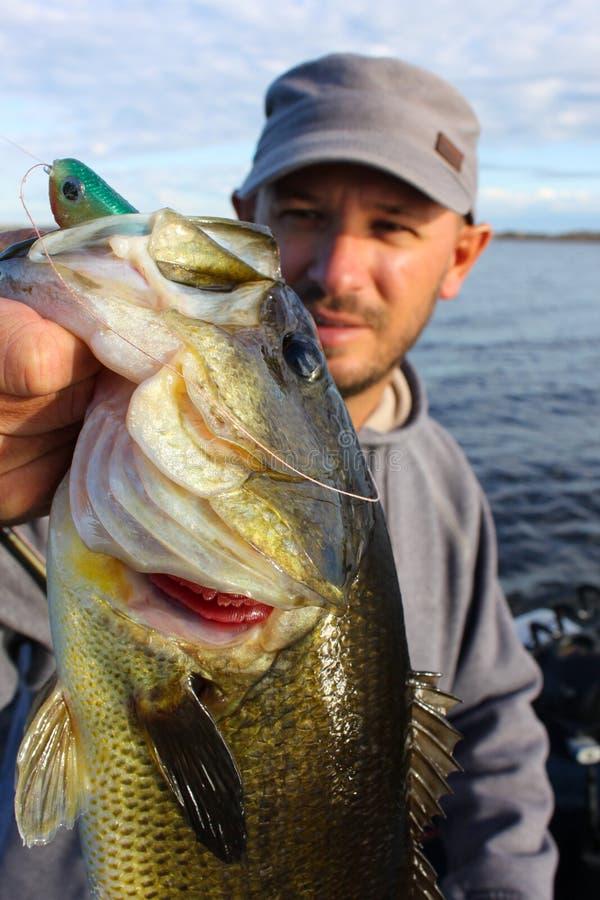 Pesca do homem que guardara o baixo Largemouth fotos de stock royalty free