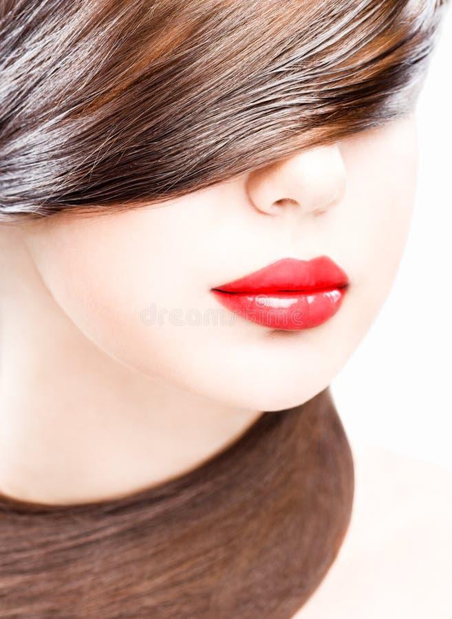 Bordos e cabelo fotos de stock