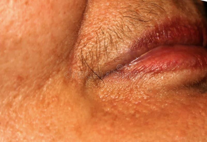 Bordos fêmeas com um bigode no bordo superior Remoção do cabelo na cara Depilação imagem de stock