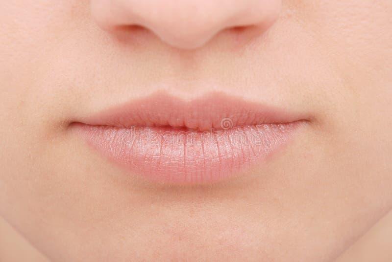 Bordos perfeitos Fim 'sexy' da boca da menina acima fotos de stock royalty free