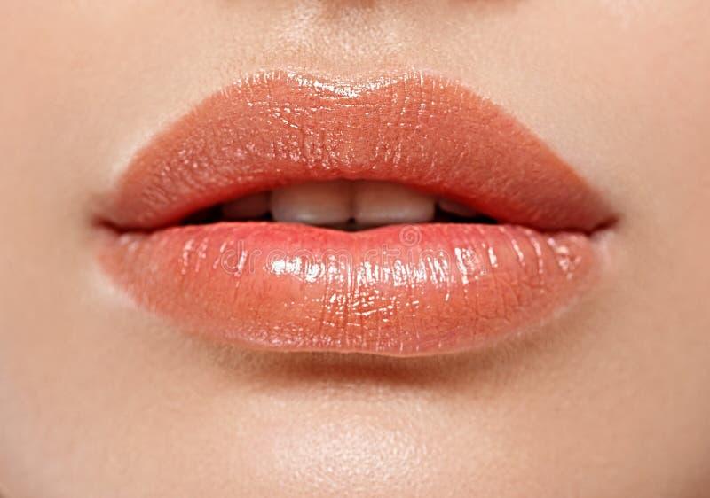 Bordos perfeitos Fim 'sexy' da boca da menina acima Sorriso da mulher nova da beleza foto de stock royalty free