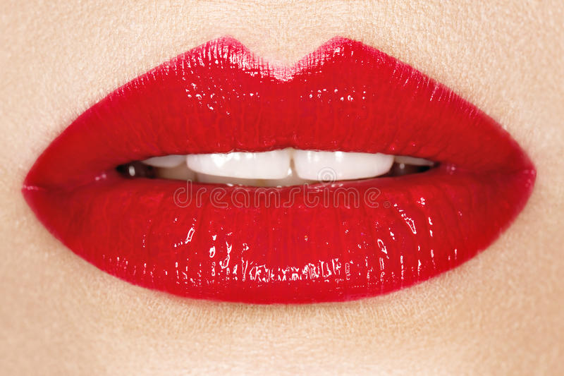 Bordos vermelhos apaixonado, fotografia macro fotos de stock