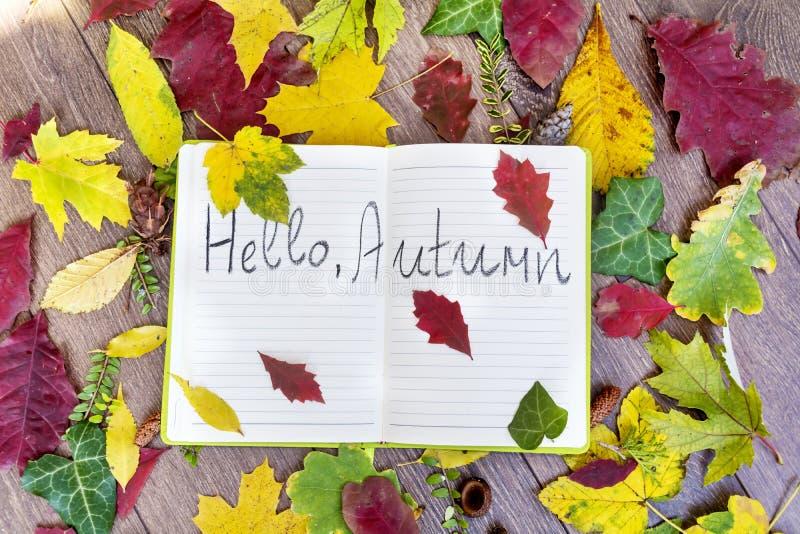 Bordure ouverte de livre par des feuilles avec bonjour le signe d'automne photo stock