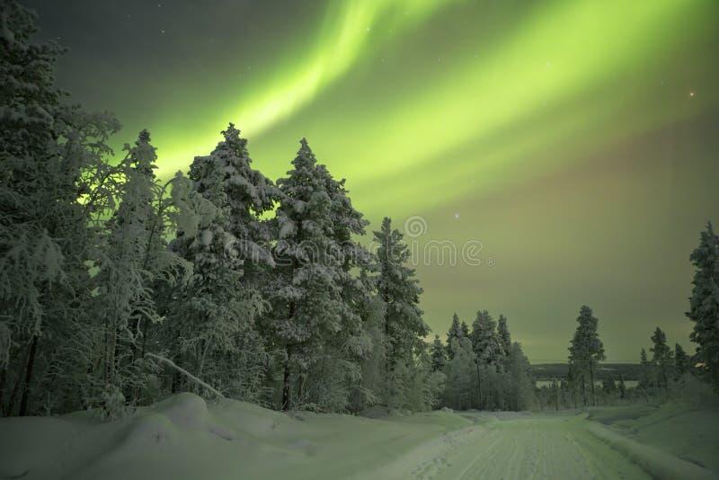 Borealis αυγής πέρα από μια διαδρομή μέσω του χειμερινού τοπίου, φινλανδικό Λ στοκ φωτογραφίες