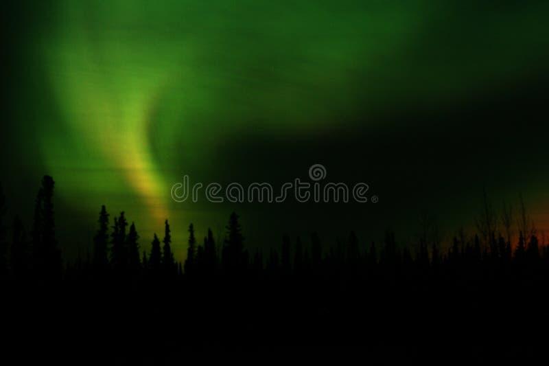 Borealis du nord photographie stock