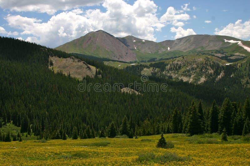Boreas przepustka Mountain View zdjęcie stock