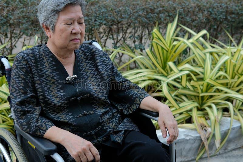 Bored oudere vrouw in rolstoel slaap in tuin bejaard vrouwelijk uitgeput vermoeid gevoel Hogere levensstijl royalty-vrije stock foto