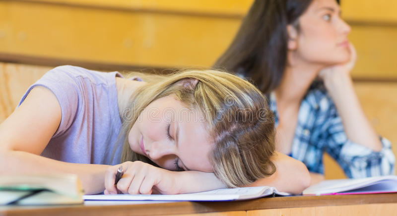 Bored student listening while classmate sleeping. In university royalty free stock images
