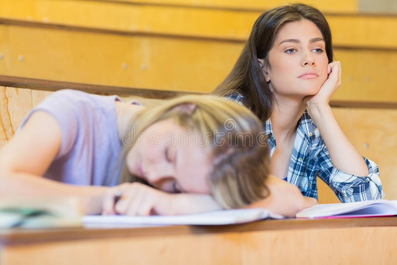 Bored student listening while classmate sleeping. In university royalty free stock photography