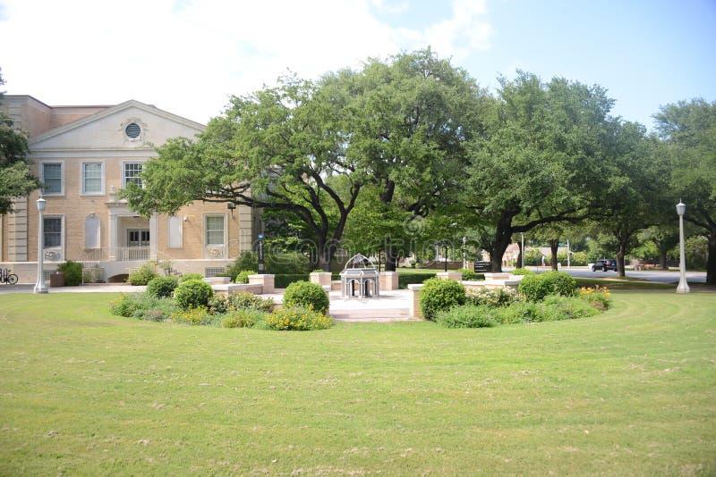 Borggård på Texas Christian University arkivbilder