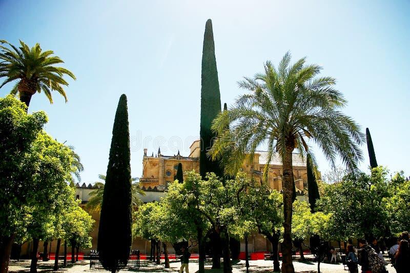Borggården av moskén och domkyrkan av Cordoba arkivbilder