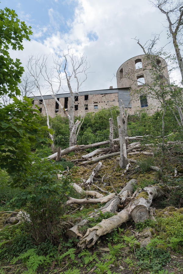 Borgholm castle ruin from the back. Borgholm castle ruin in Sweden from the back with dead trees on the slope royalty free stock photo