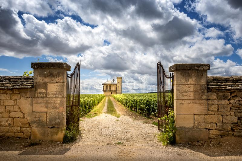Borgoña, Chateau de La Tour y viñedos, Clos de Vougeot francia foto de archivo