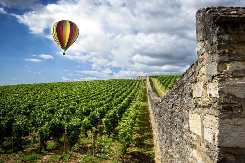 borgoña Globo del aire caliente sobre los viñedos de Borgoña francia foto de archivo libre de regalías