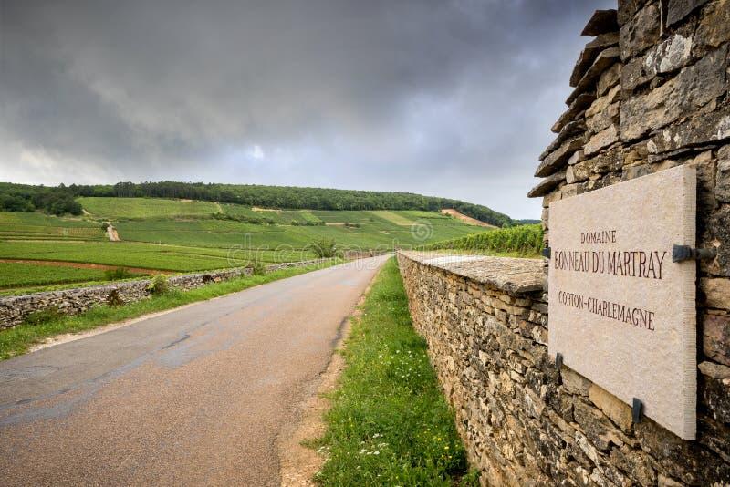 BORGONHA - CORTON: estrada cênico que cruza a região do vinho perto de Corton france imagens de stock