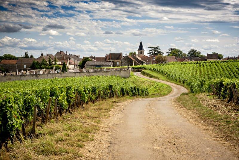 borgonha Estrada nos vinhedos que conduzem à vila de Vosne-Romanée france fotografia de stock