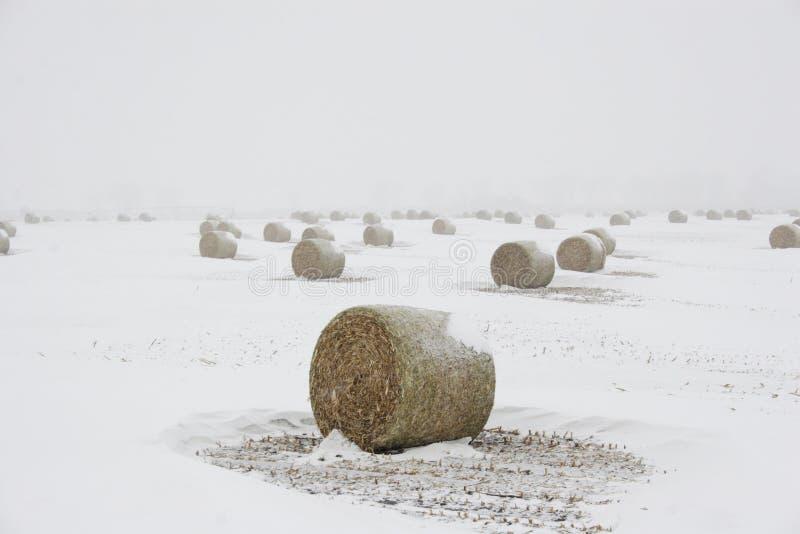 Borgtocht van hooi in blizzard royalty-vrije stock afbeelding