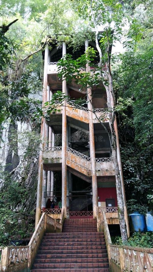 Borneo grotta royaltyfri bild