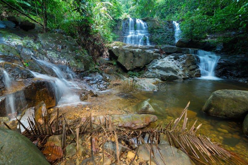 Borneo regnskogvattenfall, idyllisk ström som flödar i den frodiga gröna djungeln av den Kubah nationalparken, Sarawak, Malaysia  arkivbilder