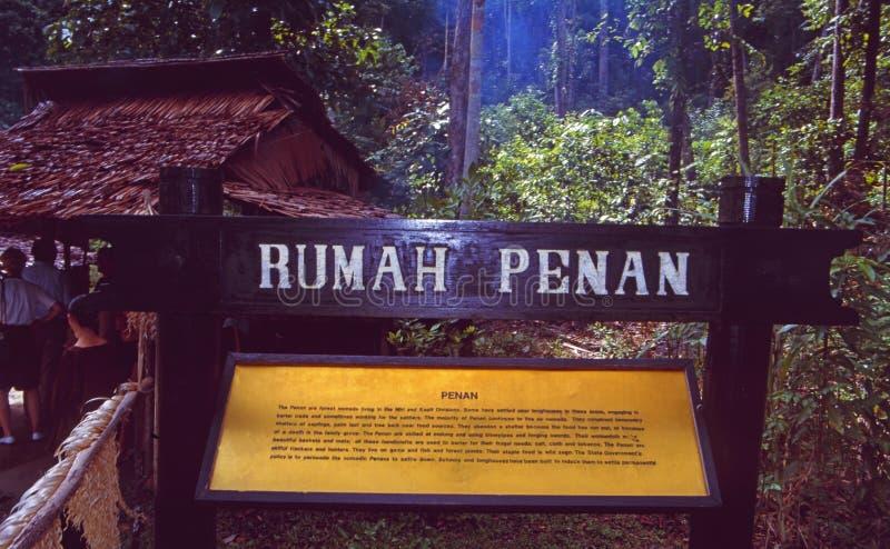 Borneo: Visitar un pueblo del cazador de la cabeza de Iban con el bosque indigenious de la gente de Penan bajo la lluvia imagen de archivo