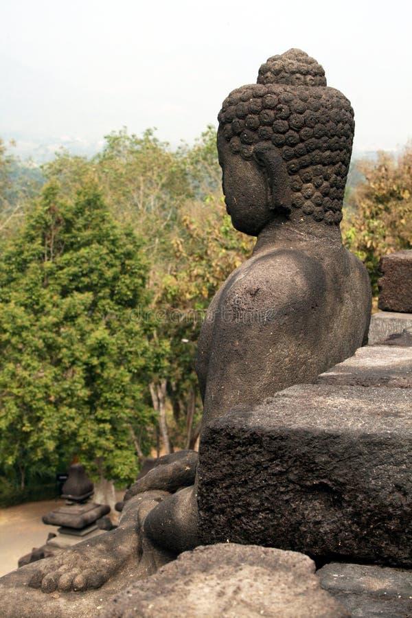 Borobudurwildernis royalty-vrije stock fotografie