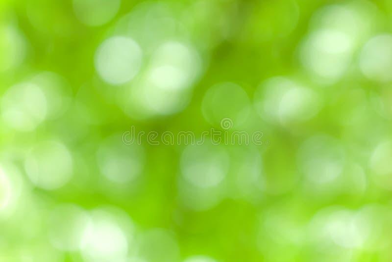 Borrão da luz natural no sumário verde do fundo imagem de stock