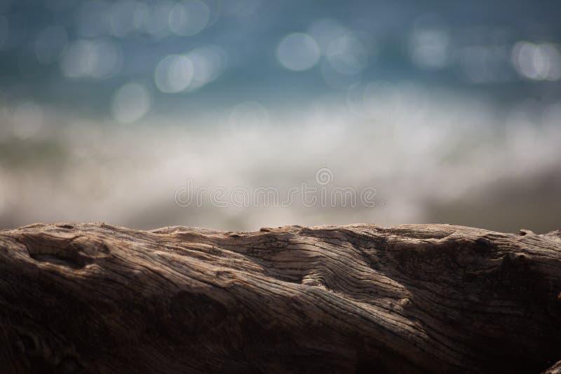 Borrão de Bokeh do oceano da madeira lançada à costa foto de stock