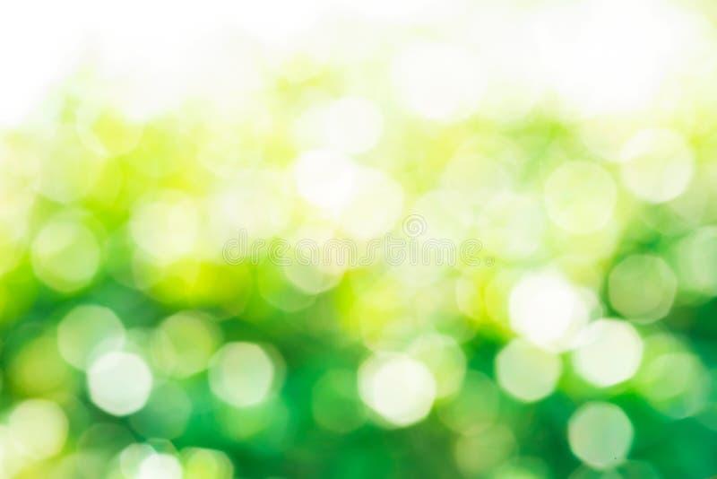 Borrão do bokeh verde abstrato do fundo da árvore/jardim imagem de stock
