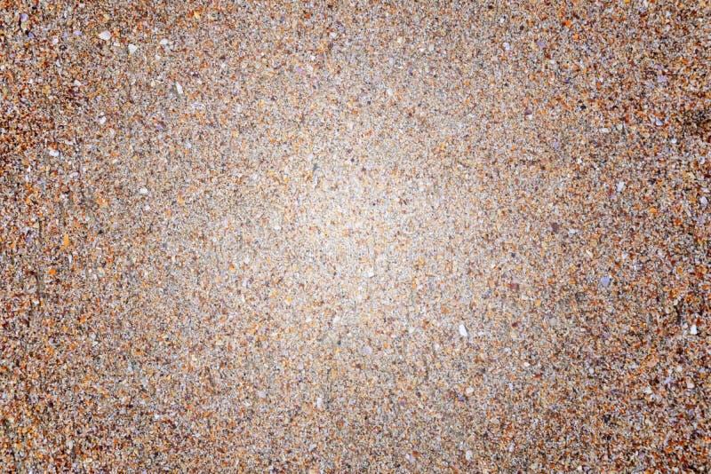 Borrado, arenoso, arenoso no litoral fotografia de stock