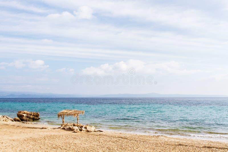 Borre a folha de palmeira bonita do verde da natureza na praia tropical com fundo do sumário da onda clara do sol do bokeh Copie  imagem de stock royalty free