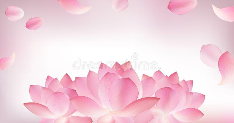 Borre o fundo cor-de-rosa com a pétala cor-de-rosa dos lótus ilustração do vetor