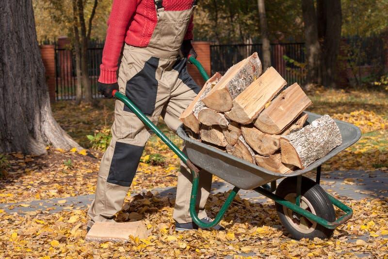 Borrow met hout stock fotografie