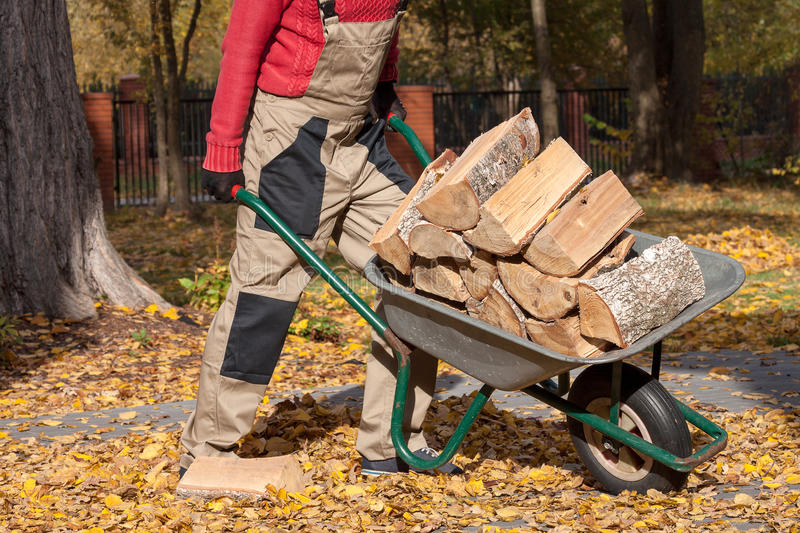 Borrow with wood. A man pushing a borrow with logs of wood stock photography