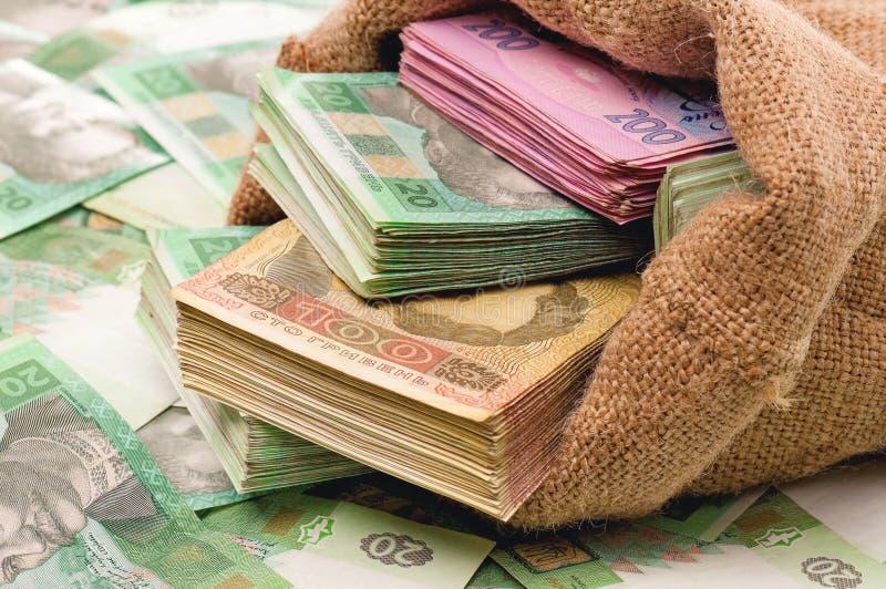 Borsa dei soldi con il hryvna immagine stock libera da diritti