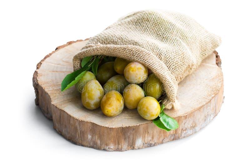 Borsa della tela di sacco in pieno delle prugne gialle fresche isolate su bianco fotografie stock