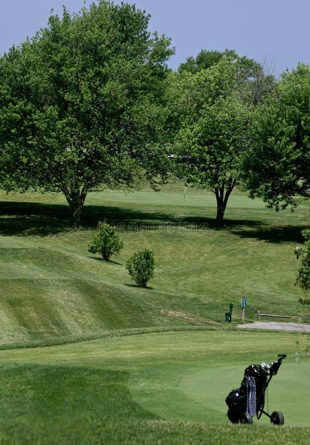 Borsa di golf immagini stock