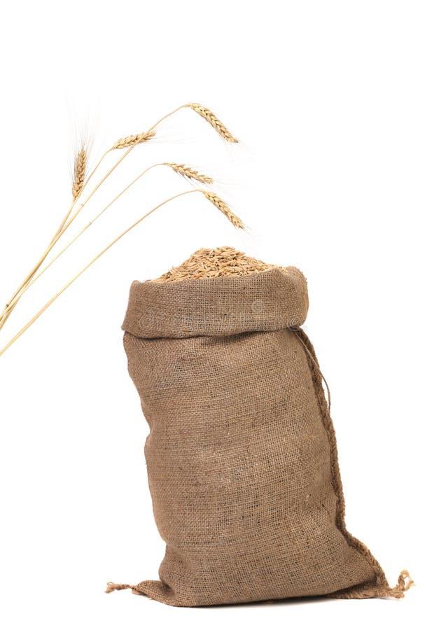 Borsa di grano e delle orecchie. fotografie stock libere da diritti