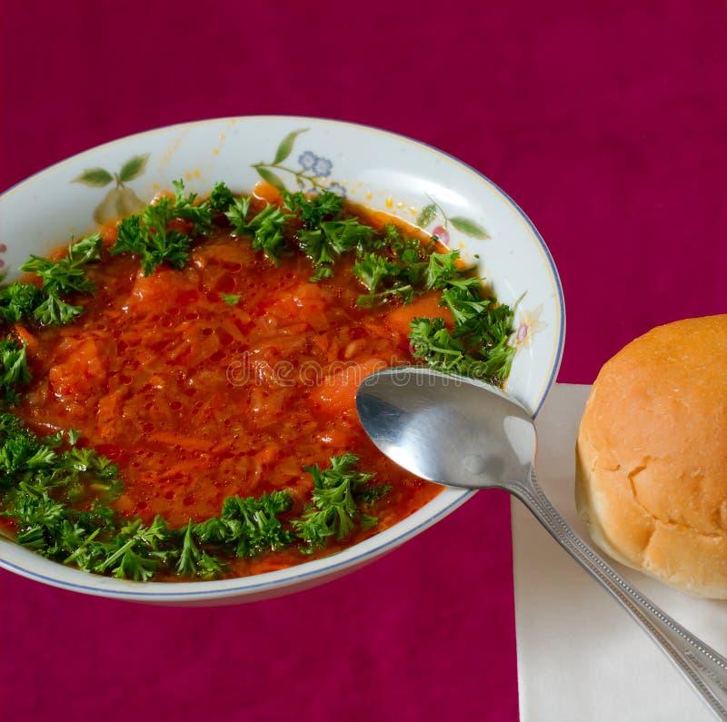 Download Borsch stock image. Image of eating, gourmet, green, dinner - 27642199
