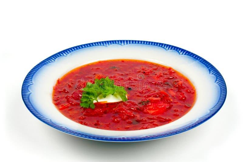 borscht polewka obrazy stock