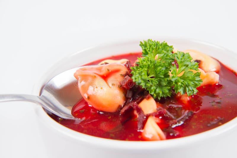Borscht rosso con le polpette fotografia stock libera da diritti
