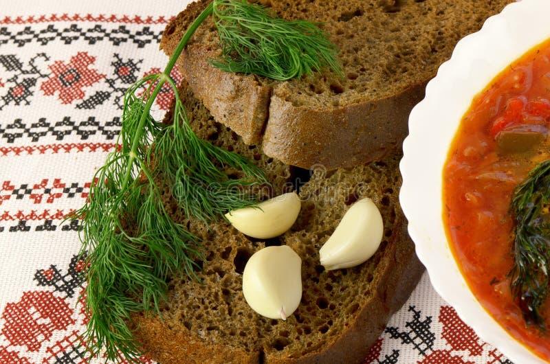 Borschtsch mit Schwarzbrot lizenzfreies stockbild